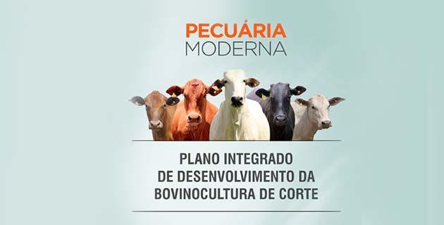Plano integrado de desenvolvimento da bovinocultura de corte