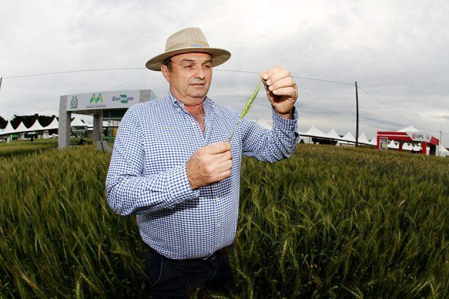 Andreas Keller Júnior, produtor rural, aposta em variedades selecionadas de trigo e consegue aumentar sua rentabilidade